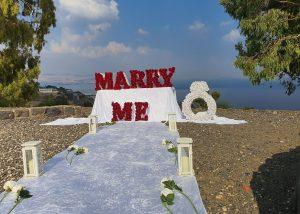 הצעת נישואין טבריה יער שוויץ(1.11.19)00003