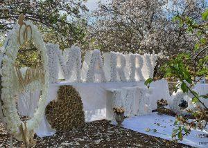 הצעת נישואין בטבע בצפון חיים & סהר(27.2.20)00004